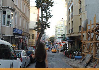 Brechtrezeption in der Türkei
